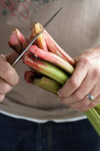 Raising Rhubarb
