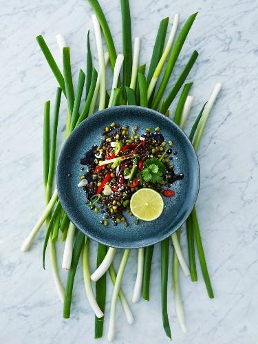 Spicy mung bean salad with teriyaki sauce