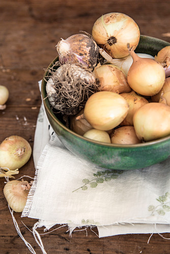 Bowl of onions and garlic on printed cloth