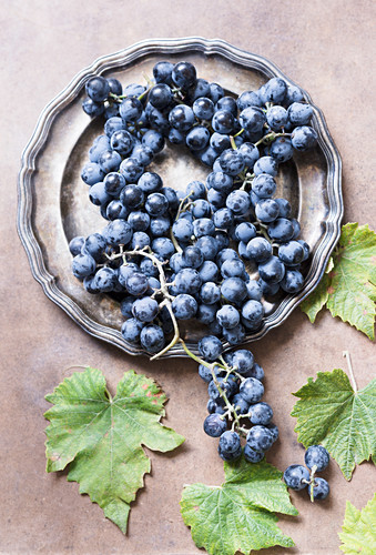 Blue grapes on pewter plate
