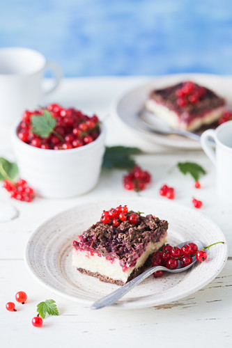 Cheesecake with red currant and chocolate crust