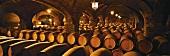 Wine cellar of Santa Rita Winery, Valle del Maipo, Chile