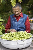 Country woman trimming green beans out of doors