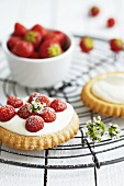 Strawberry tartlets with icing sugar on a wire rack