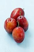 Four red cacanska rana plums
