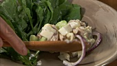 Waldorfsalat mit Putenfleisch servieren