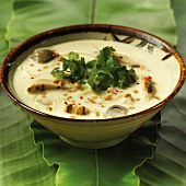 Tom Ka Gai; Thai Coconut Chicken Soup; In a Bowl