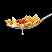Corn Square Cereal with a Strawberry in a Spoon with Milk Dripping; Black Background