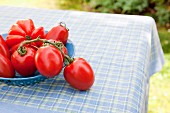 Assorted tomatoes (beef, vine and plum tomatoes) in a blue enamel bowl on a table in the garden