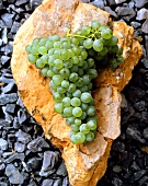 Chenin Blanc grapes lying on stone, South Africa