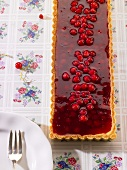 Rectangular redcurrant tart