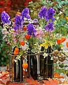 Eisenhut, Astern, Herbstastern & Lampionblume in Bierflaschen