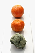 Clementines, fresh, old and mouldy