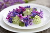 Wreath of hyacinths, violets and viburnum on plate
