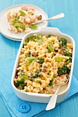 Pasta bake with broccoli, salmon, dried tomatoes and basil