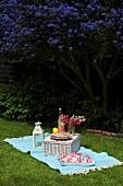 Summer picnic on grass