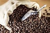 Roasted coffee beans with hessian sack and scoop