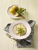 Lemon risotto with herbs