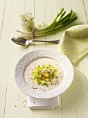 Spicy cold yogurt yogurt with spring onions and sprouts