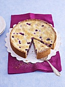 A white Zupfkuchen (a cheesecake and chocolate cake combination) with blueberries