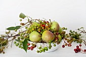 Chokeberries and apples