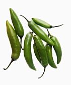 A green chilli pepper (chile serrano, sierra chilli)