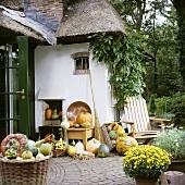 Kürbisse und Herbstblumen vor einem reetgedeckten Haus mit üppig wachsender Kletterpflanze