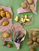 Various varieties of potatoes with names