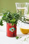 A tomato tin as a herb vase