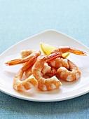 Cooked peeled prawns