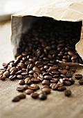 Partially spilt bag of coffee beans