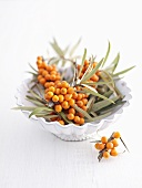 Sea buckthorn berries in and beside dish