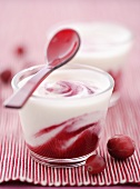 Yoghurt with cranberry sauce