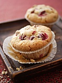 Cranberry muffins in paper cases