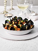 Steamed mussels with chilli tomato sauce (Christmas)