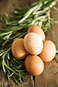 Fresh eggs and rosemary