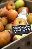 Mixed English organic apples
