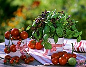 Tomatoes and basil (green Genovese and Baristo rosso)