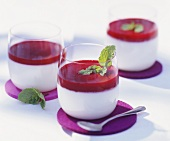 Panna cotta with fruit sauce in glasses