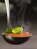 Ladle full of tomato soup with basil
