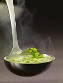Ladle full of pea soup