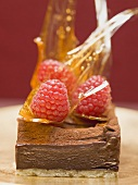 Small chocolate torte with raspberries & caramel shards