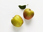 Two apples (variety: Boskop)