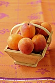 Apricots in a wooden basket