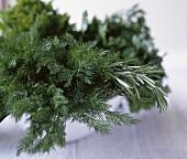 Fresh herbs in white bowl