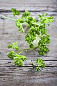 Fresh parsley on a wood background