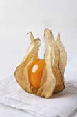 Physalis on a white towel