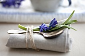 A spoon and a blue hyacinth on a napkin