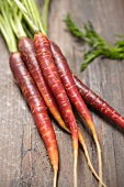 Fresh carrots on wooden background