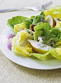 Salad leaves with walnuts, blue cheese and pears